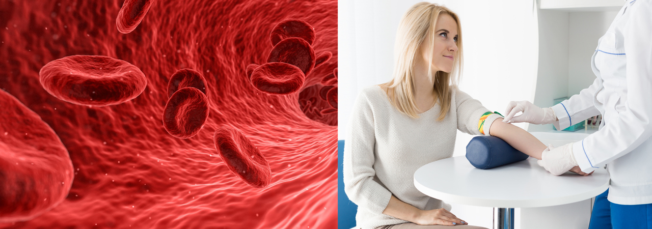Woman with doctor, blood cells graphic
