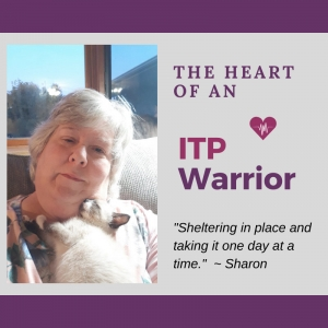 ITP Warrior - Sharon